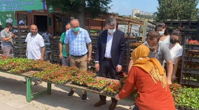 Mezarlık ziyaret edenlere ücretsiz çiçek dağıtıldı
