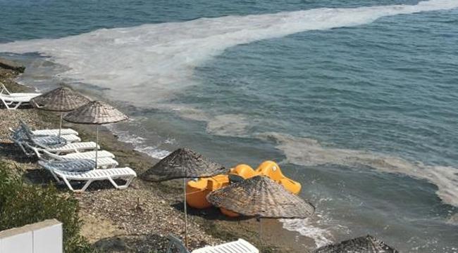 Gemlik sahillerinde yine müsilaj kabusu